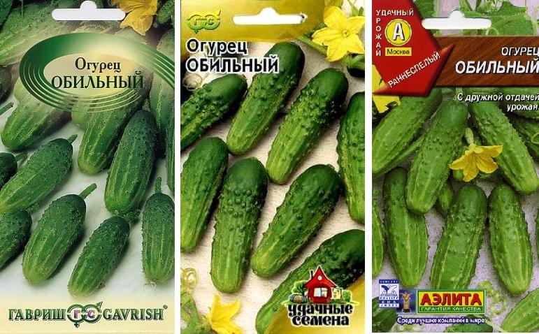 ✅ о сорте огурца обильный: описание, характеристики, агротехника выращивания - tehnomir32.ru
