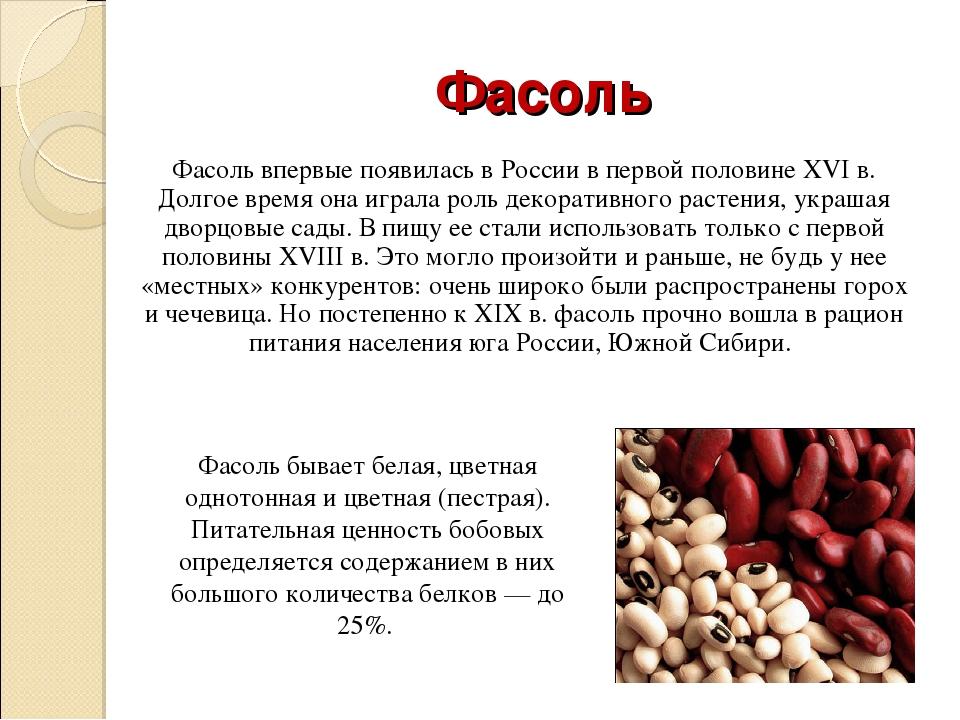 Чем отличаются спаржевая фасоль и стручковая фасоль: фото бобовых и разница между ними