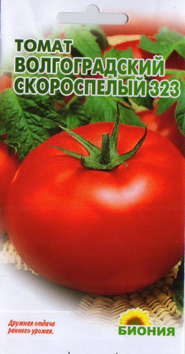 Томат ленинградский гигант: описание скороспелого сорта с фото