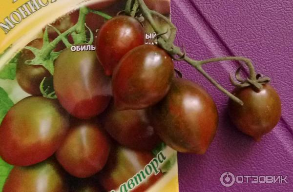 Томат монисто шоколадное характеристика и описание сорта maksiflora.ru
