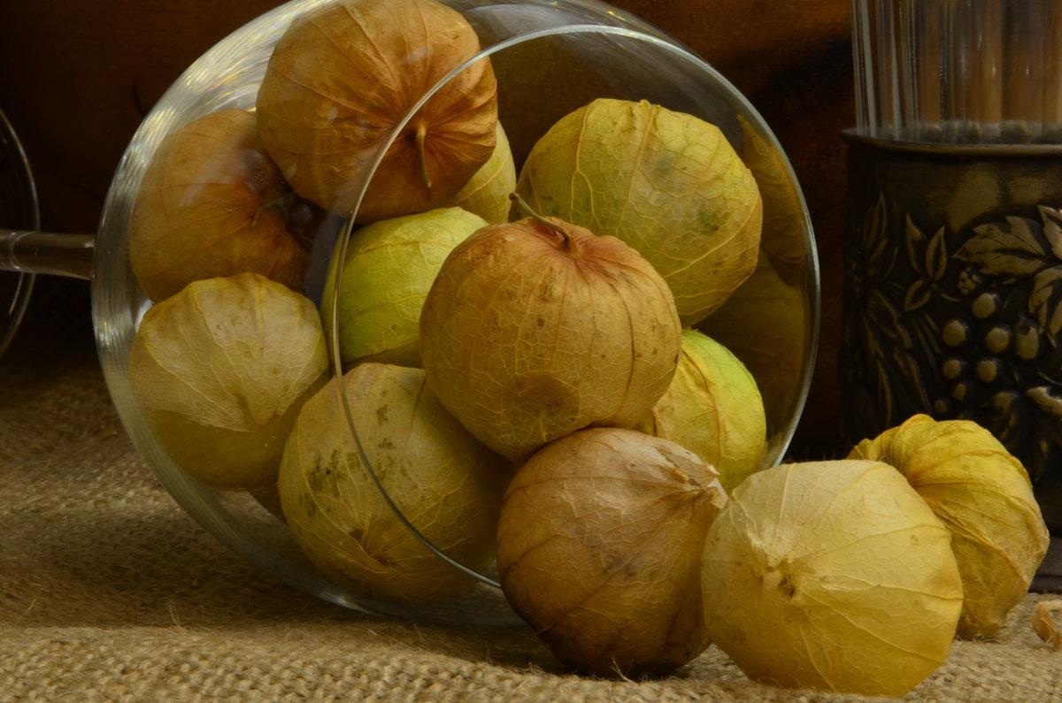 Как заготовить физалис овощной на зиму в домашних условиях с фото