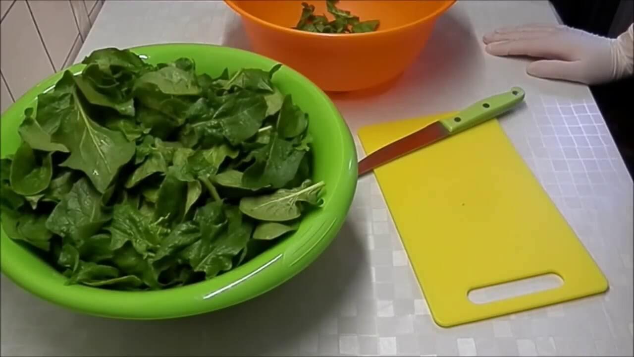 Заготовка шпината на зиму впрок в домашних условиях и способы, как сохранить в холодильнике свежим, а также можно ли сушить и как консервировать и замораживать? русский фермер
