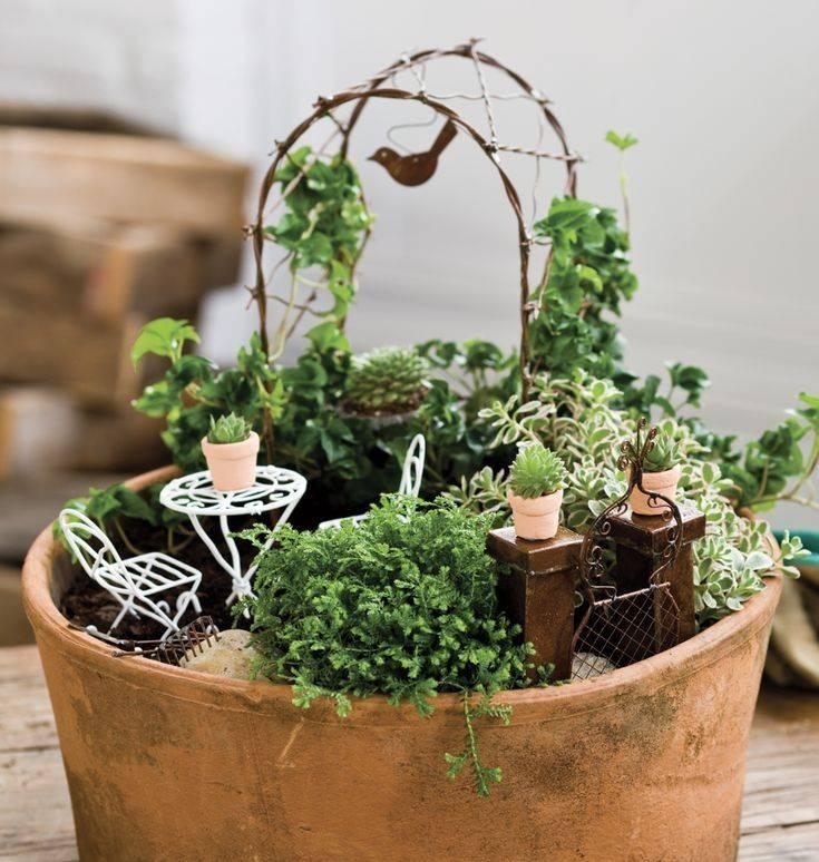 Мини-сад в горшке своими руками | home-ideas.ru