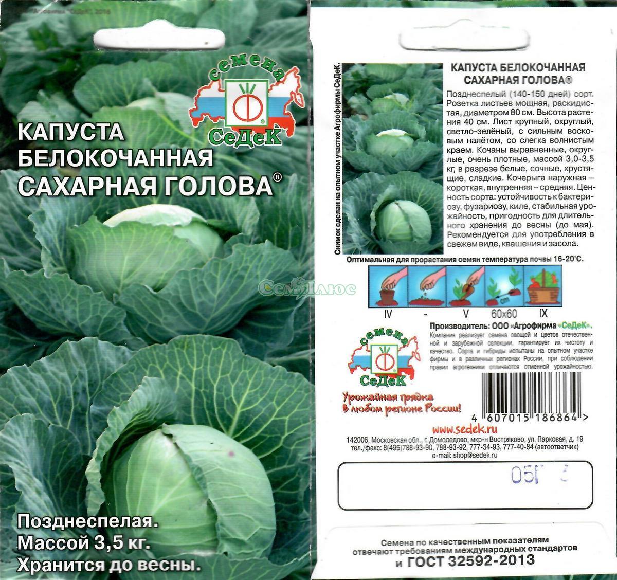 Лучшие сорта ранней капусты - названия, фото и отзывы