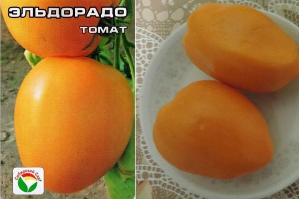 Томат мандаринка — описание сорта, урожайность, фото и отзывы садоводов