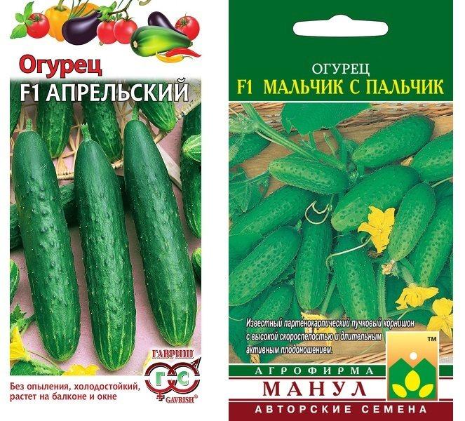 Огурец «апрельский»: описание характеристик сорта f1. посадка, уход, урожайность и выращивание из семян, фото
