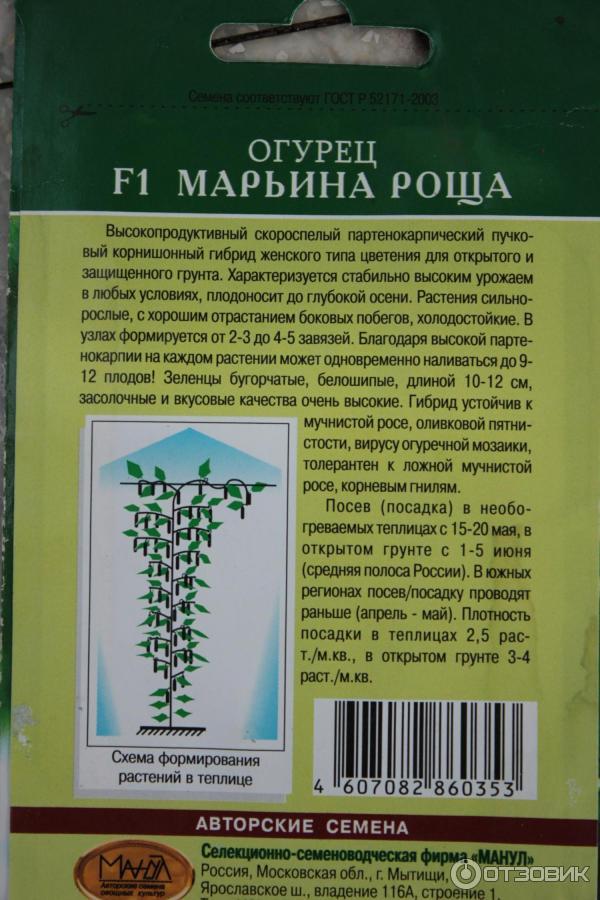 Огурец марьина роща f1 - описание и характеристика сорта