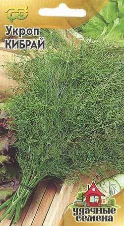 Описание и правила выращивания укропа сорта кибрай