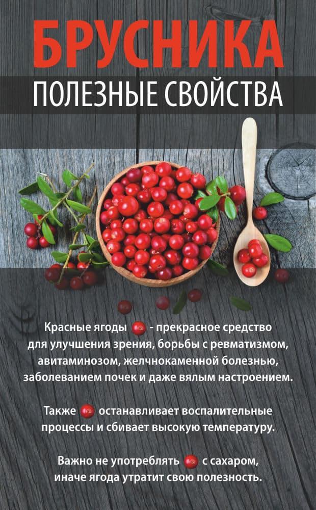 Брусника: полезные свойства и противопоказания ягоды. лечебные свойства.