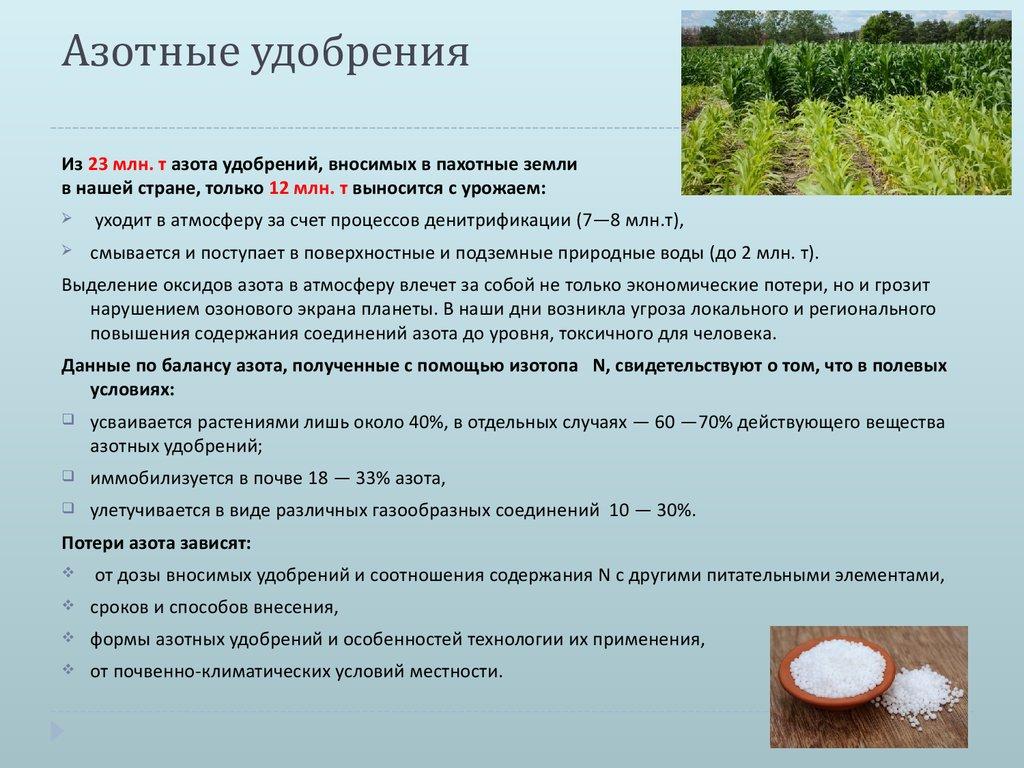 Плодородие почвы: что нужно знать об удобрении