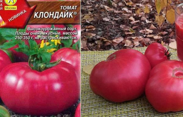Томат клондайк: характеристика и описание сорта с фото