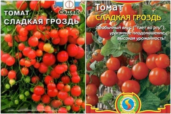 Урожайные томаты для теплицы из поликарбоната, лучшие сорта для подмосковья, сибири и урала