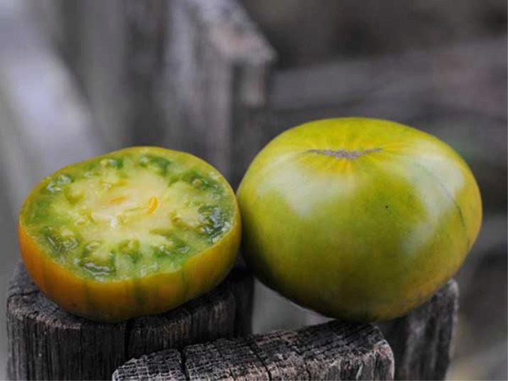 Сорт помидоров «малахитовая шкатулка»: характеристика, плюсы и минусы