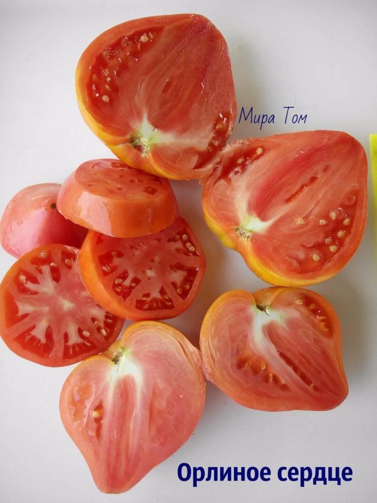 Описание сорта томата пылающее сердце, характеристики и выращивание - всё про сады