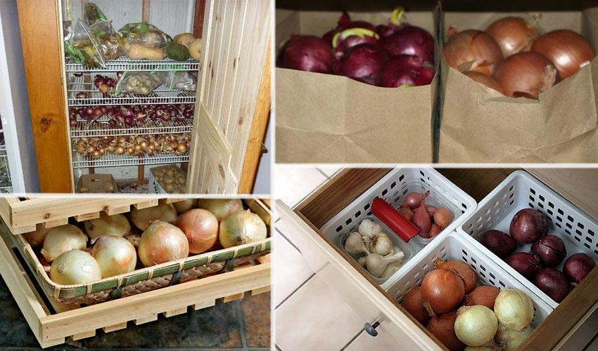 Как хранить овощи в домашних условиях – выбор места и температуры