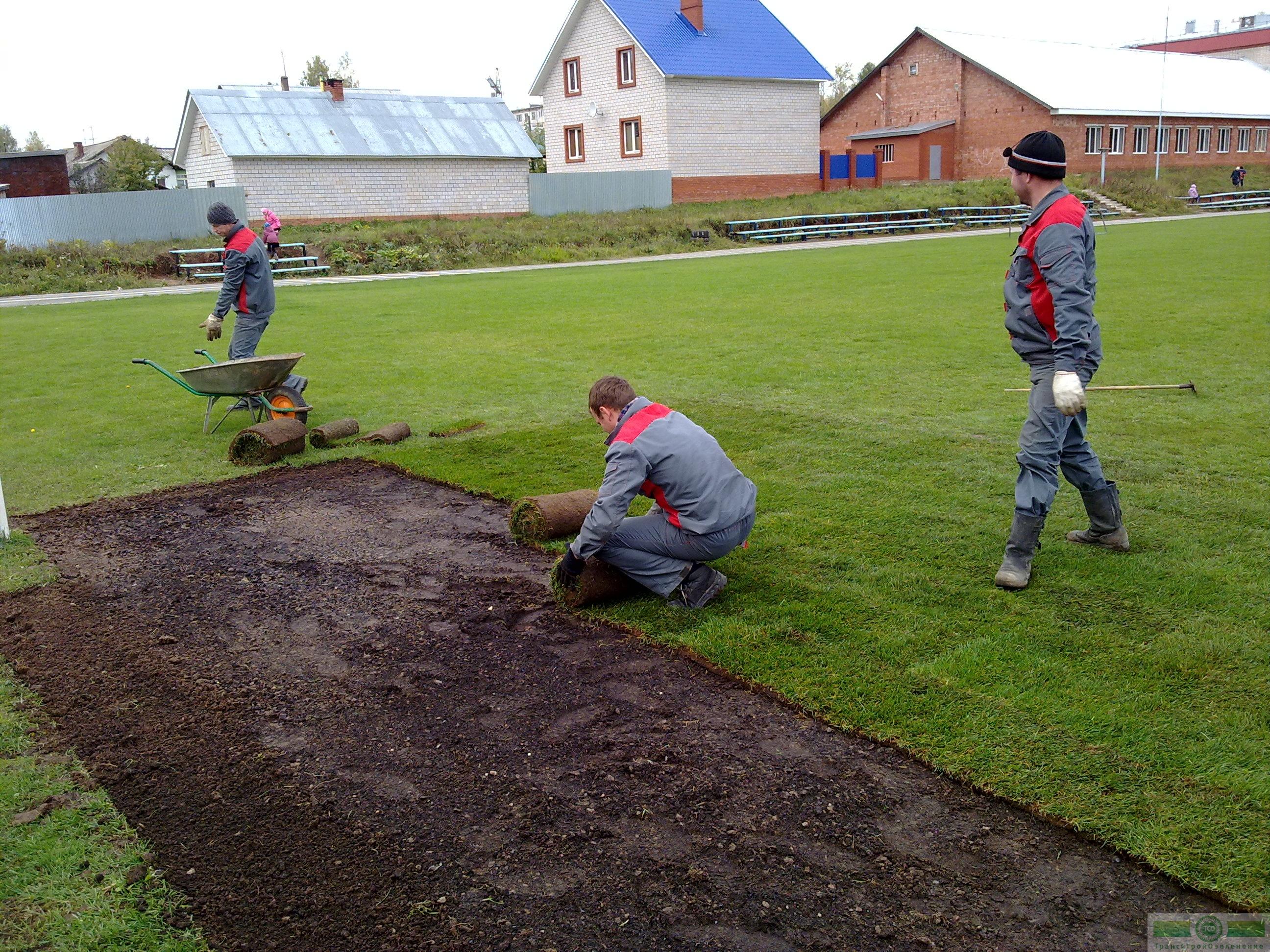 Когда лучше копать огород: осенью или весной, и почему