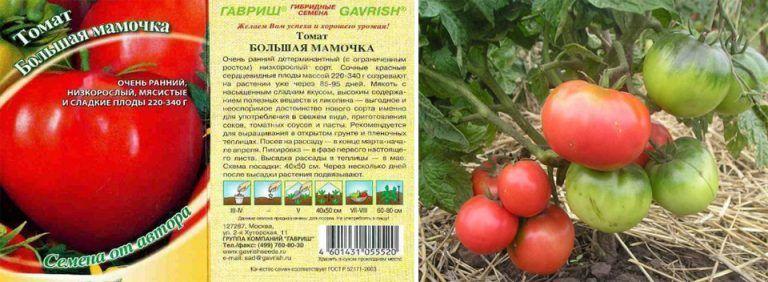 Ранние помидоры для теплиц из поликарбоната. лучшие сорта