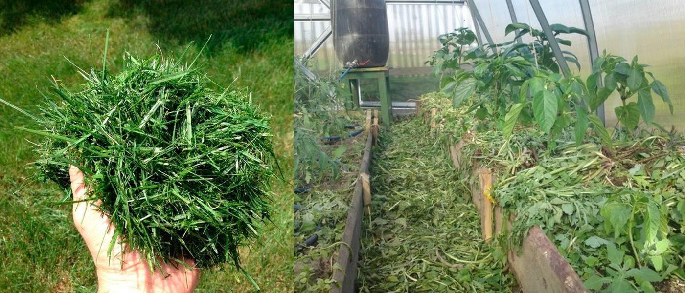 Горячая трава для мульчирования - огород природное земледелие
