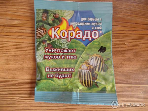 Ратибор от колорадских жуков на картофеле: инструкция