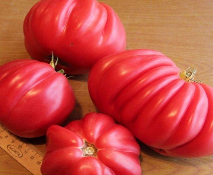Томаты для сладкоежек — сорта помидор инжир розовый и красный