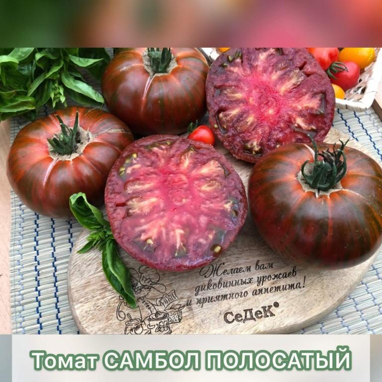 Описание сортов томатов, выращенных мной в 2015гг