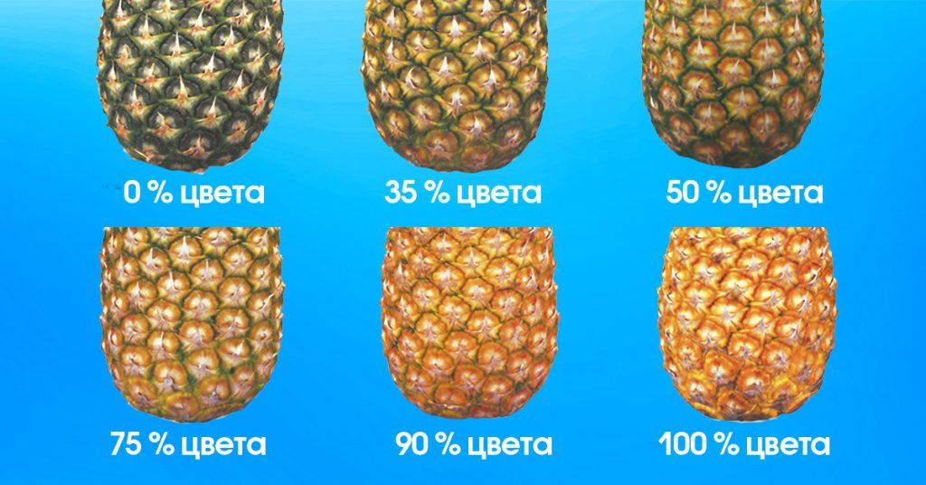Как выбирать ананас? 15 фото как правильно определить спелый и сладкий ананас? как выглядит хороший и вкусный ананас?