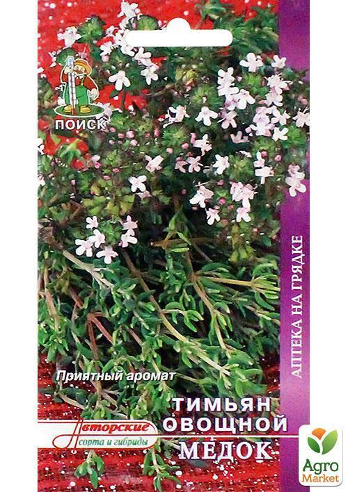 Тимьян ползучий: выращивание из семян и уход в открытом грунте с фото