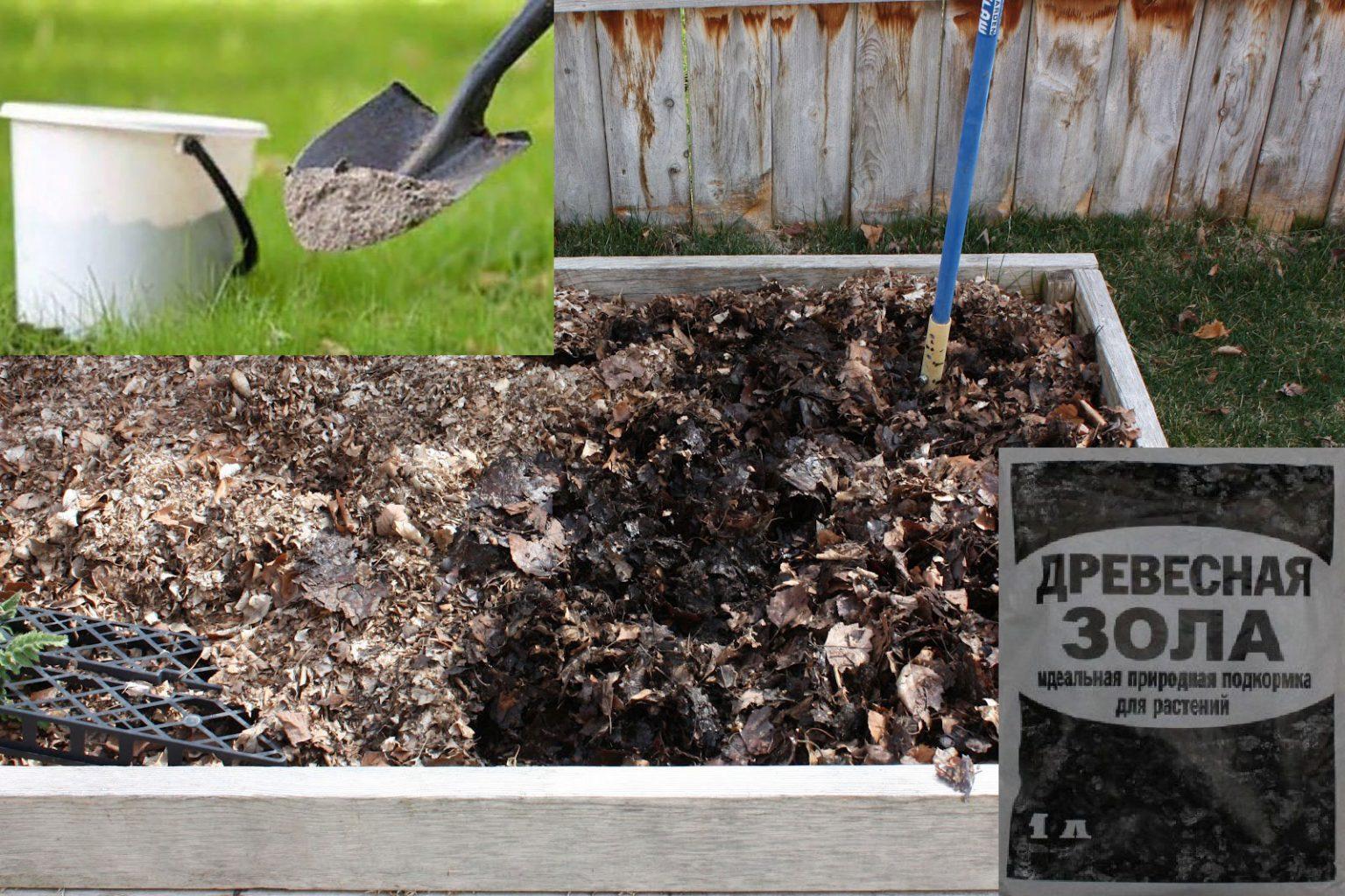 Применение древесной золы на огороде и в саду: советы, как использовать
