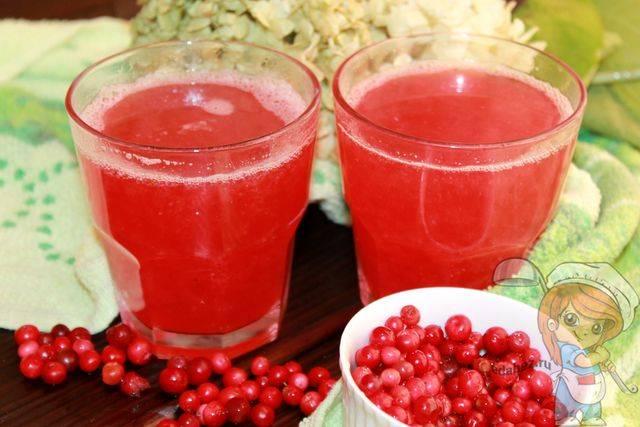 Брусничный морс: рецепт из замороженных ягод на зиму, с фото и видео