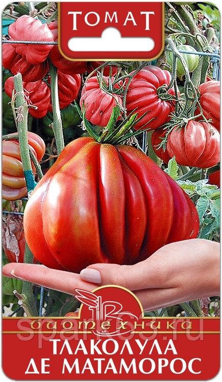 Мексиканские гости необычной формы — томат тлаколула де матаморос: отзывы, описание сорта