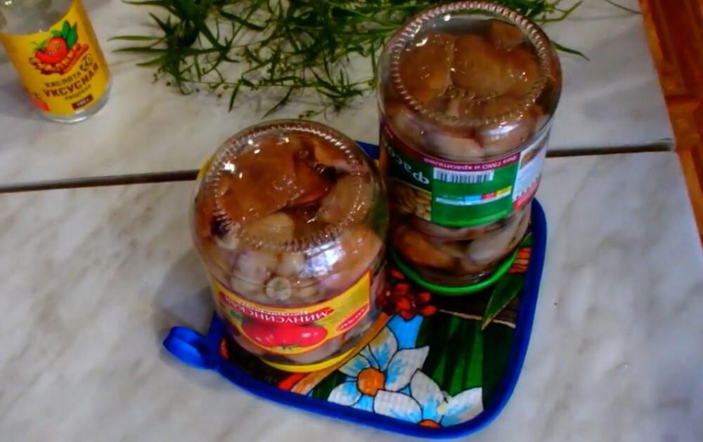 Маринад для маслят - самые вкусные рецепты для грибов на зиму в домашних условиях
