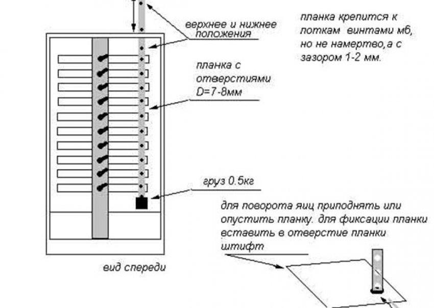 Инкубатор своими руками в домашних условиях: схема и описание
