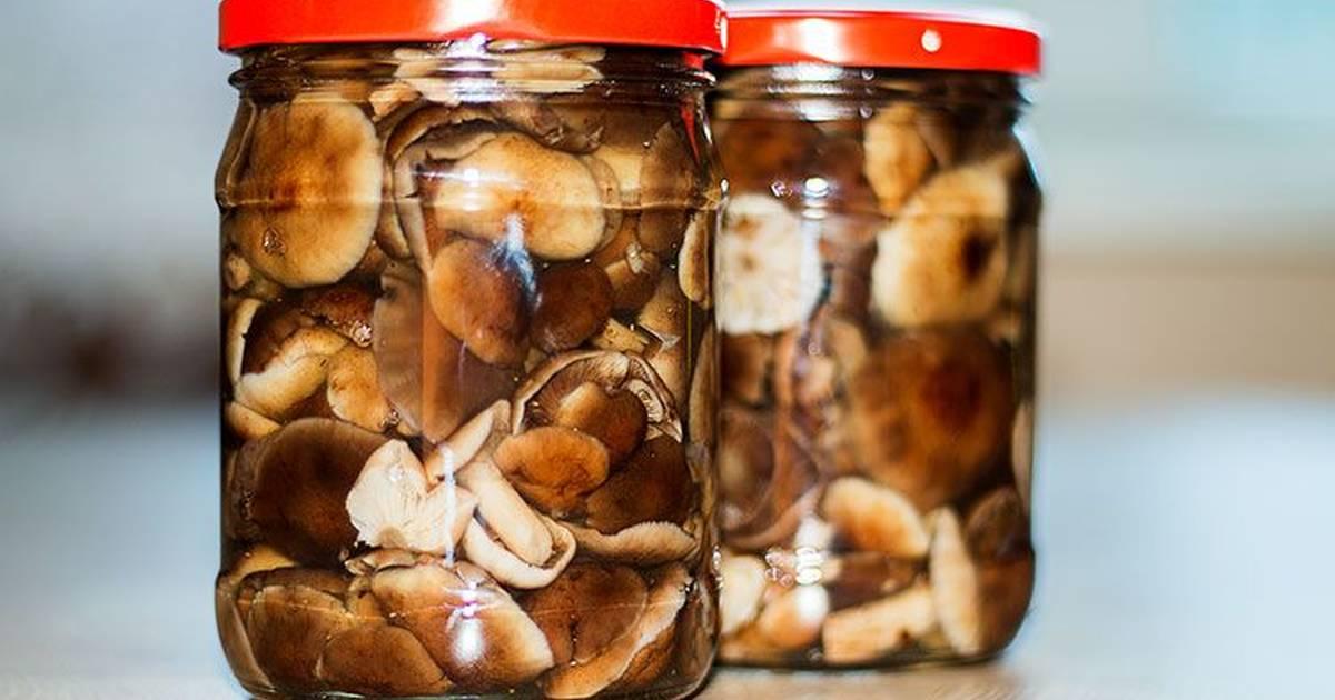 Маринованные опята на зиму самые вкусные — рецепты приготовления