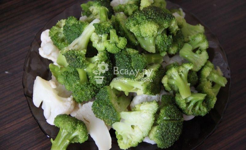 Как сохранить брокколи на зиму в домашних условиях: рекомендации