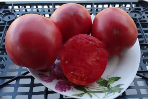 Томат адамово яблоко: характеристика, выращивание и уход, отзывы