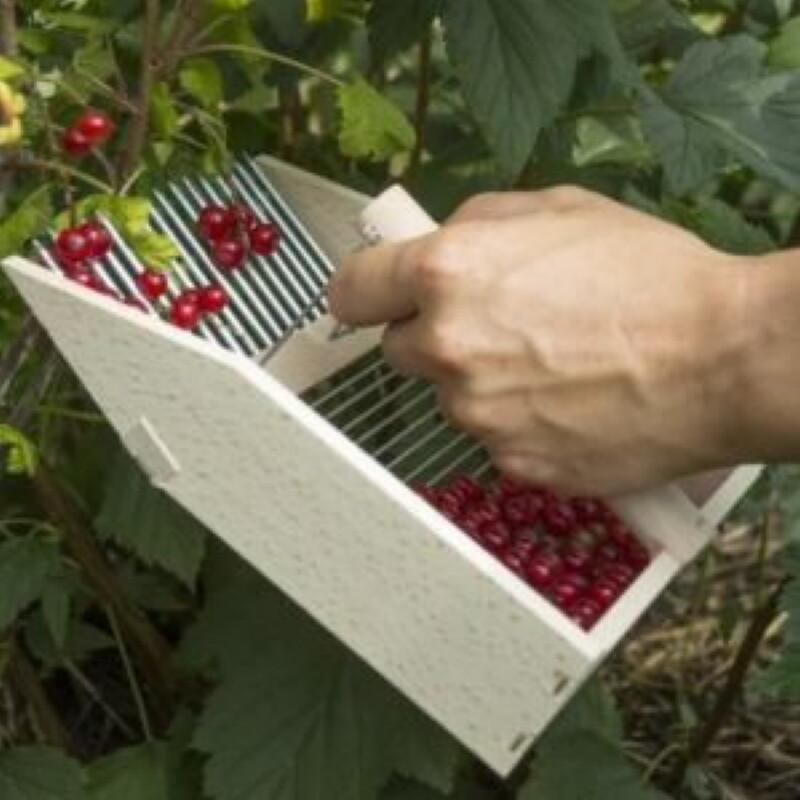 Комбайн для сбора ягод своими руками: чертежи, как сделать ручной из бутылки, для сборки стоя