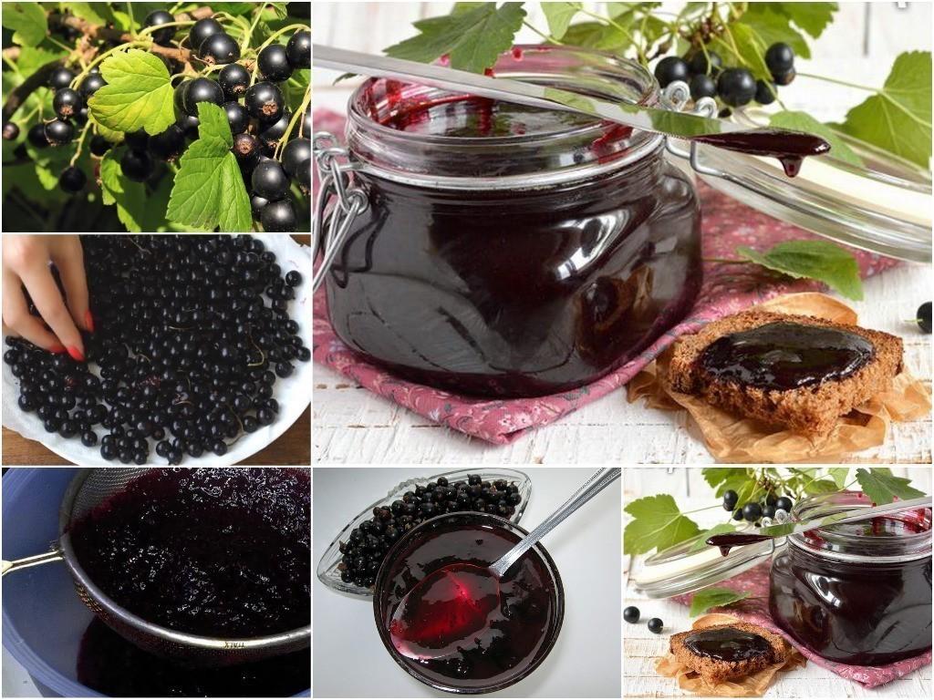20 лучших рецептов приготовления заготовок из черной смородины на зиму
