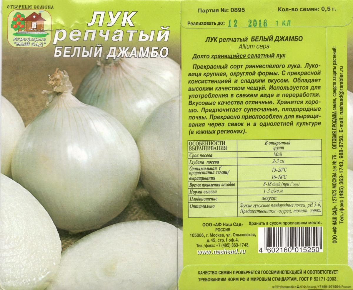 Яровой чеснок: лучшие сорта для разных регионов россии