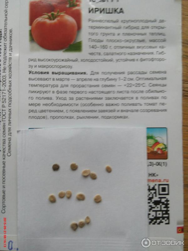 Сорт с обильным урожаем черри — томат рубиновые пальчики f1: описание помидоров и характеристики