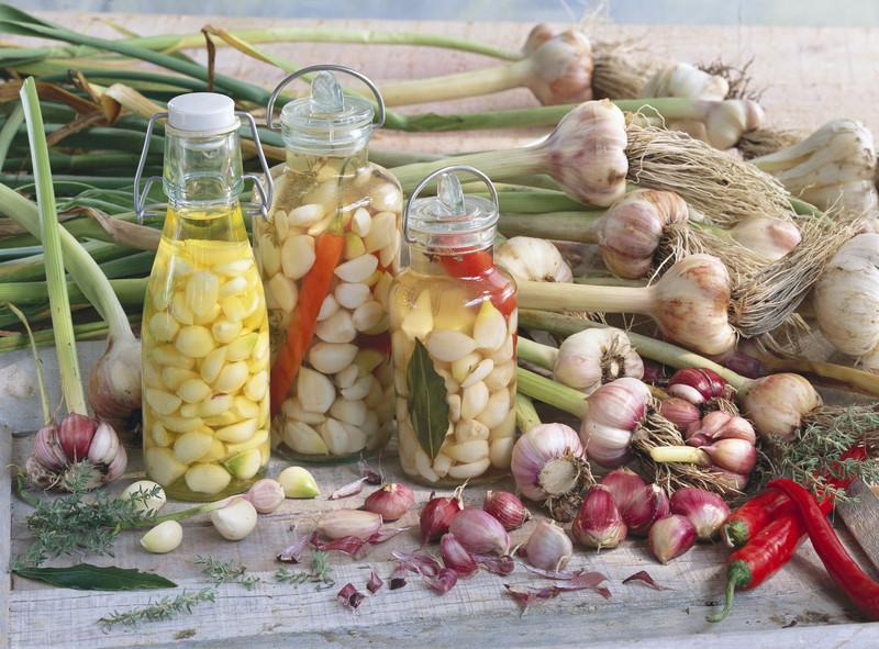 Чеснок на зиму: рецепты очень вкусного приготовления и правила хранения