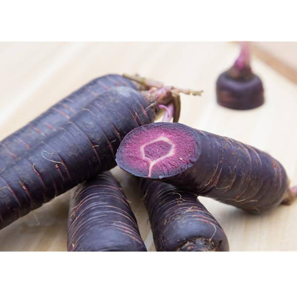 Что нужно знать о сортах моркови, ее классификации, пользе, посадке и хранении?