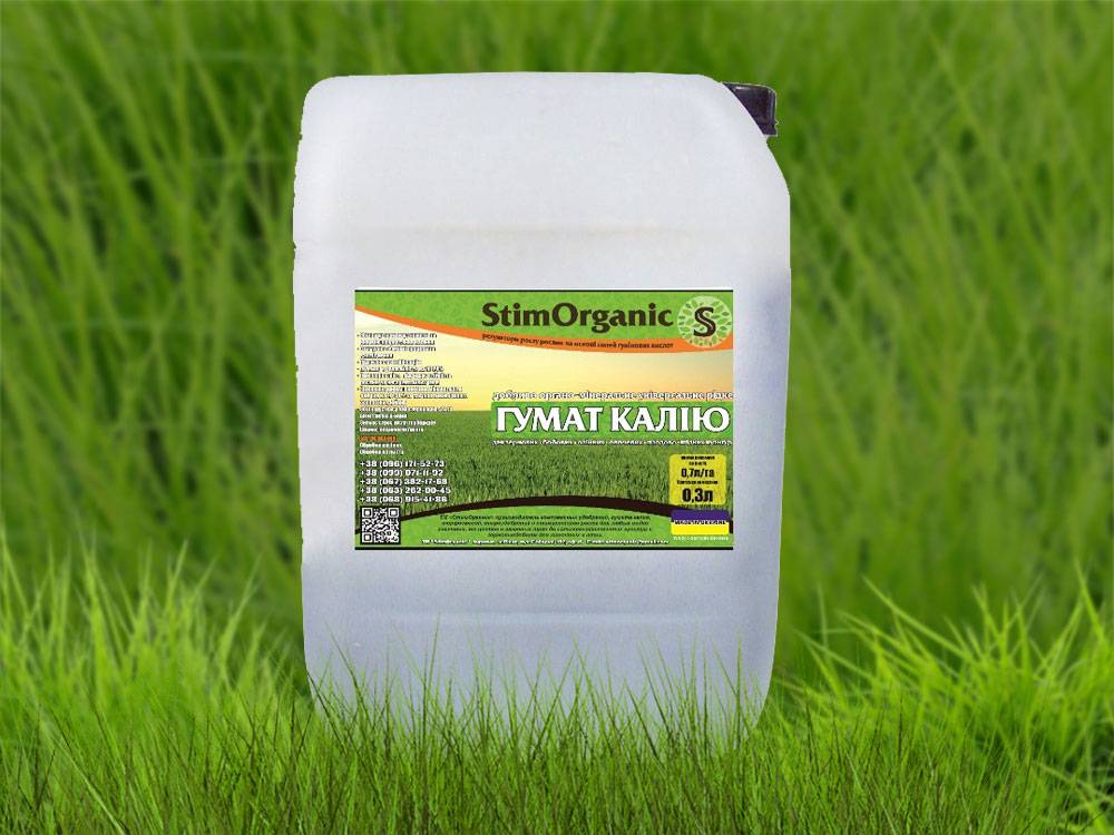 Применение биогумуса для огурцов в сухом и жидком виде