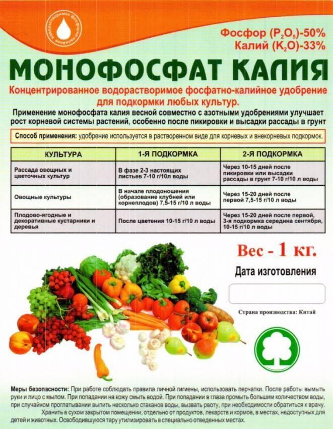Применение кальциевой селитры для капусты, как подкормить и норма внесения