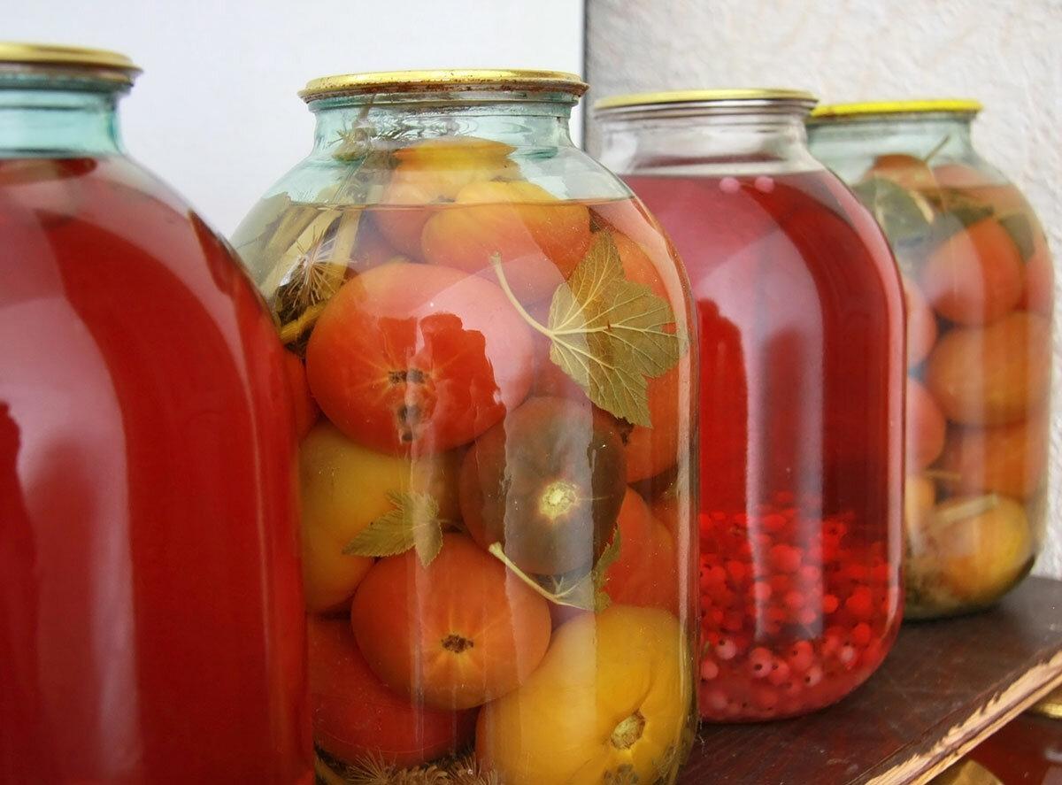 Вздулись банки с помидорами: что делать, как спасти консервацию, правила хранения