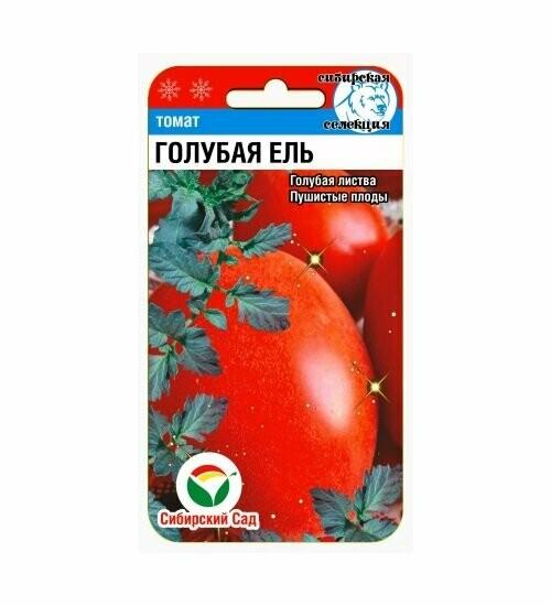 ✅ томат серебристая ель отзывы фото - питомник46.рф