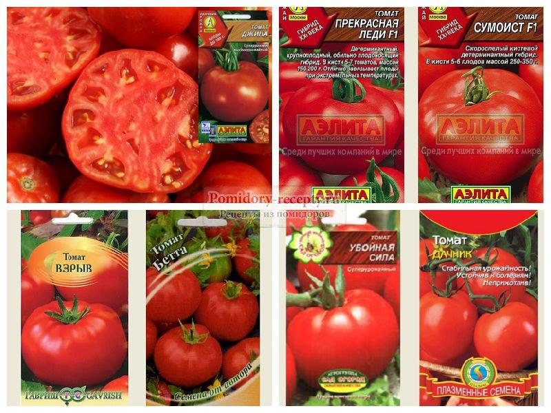Низкорослые сорта томатов для открытого грунта: ранние, урожайные, крупноплодные для подмосковья, сибири, урала