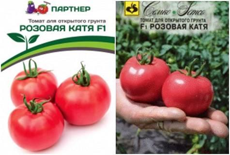 Томат катя f1: описание, характеристика, урожайность сорта, особенности выращивания и посадки помидоров, отзывы, фото
