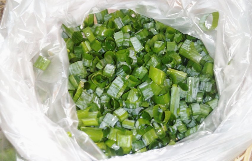 Как сохранить зеленый лук на зиму в домашних условиях: 4 способа