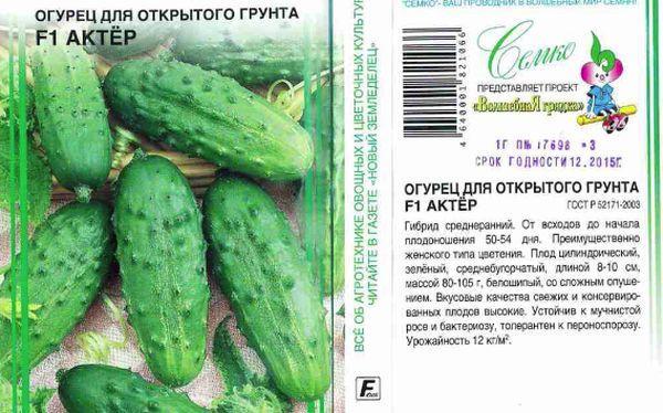 32 лучших гибридных сорта огурцов для открытого грунта и теплицы