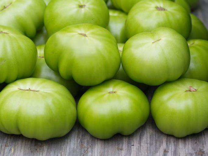 Лягушка-помидор, томатный узкорот (dyscophus antongilii)